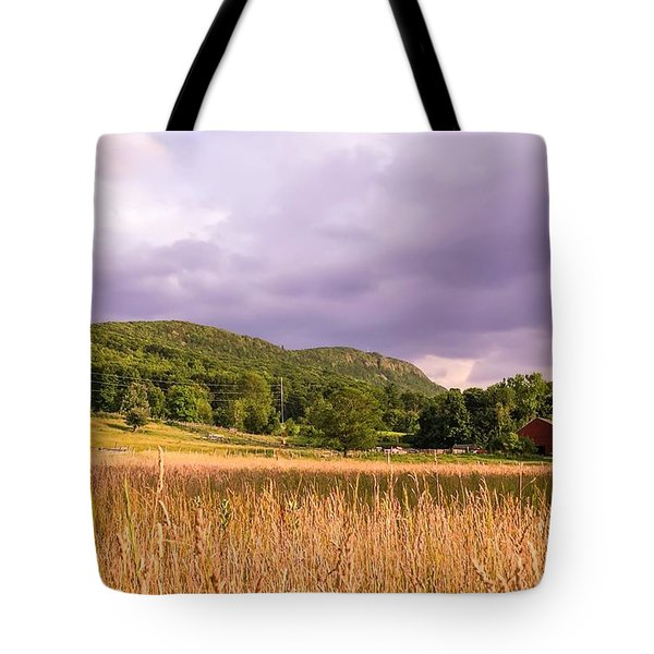 East Street View Tote Bag