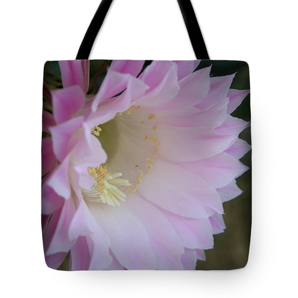 Easter Lily Cactus East Tote Bag