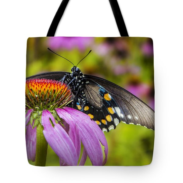 Tote Bag featuring the photograph Eastern Black Swallowtail Butterfly by Ken Barrett