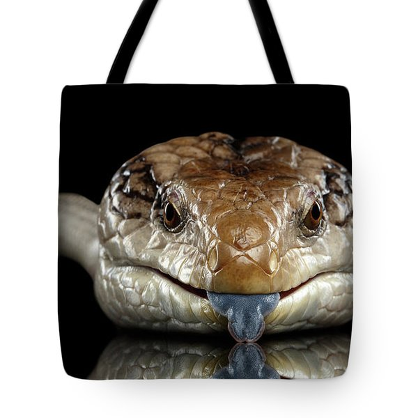Eastern Blue-tongued Skink, Tiliqua Scincoides, Isolated On Black Background Tote Bag by Sergey Taran