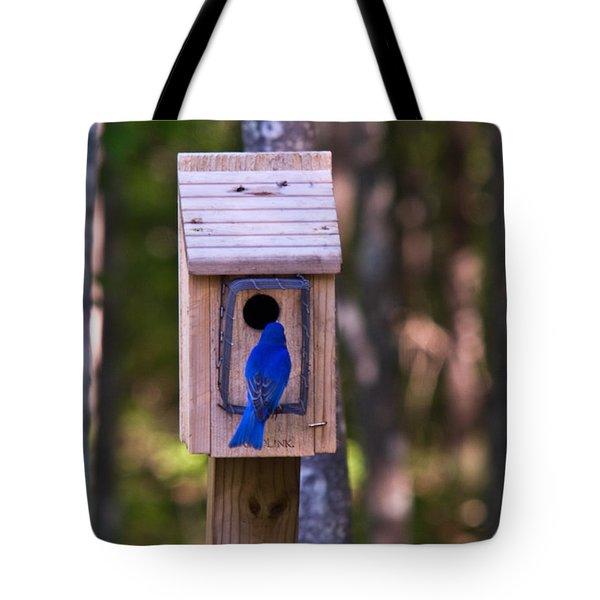 Eastern Bluebird Entering Home Tote Bag by Douglas Barnett