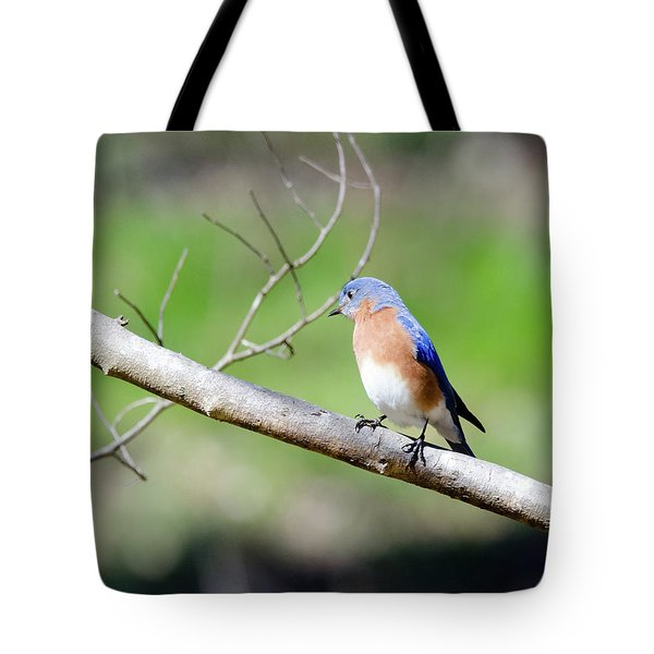 Tote Bag featuring the photograph Eastern Bluebird by George Randy Bass