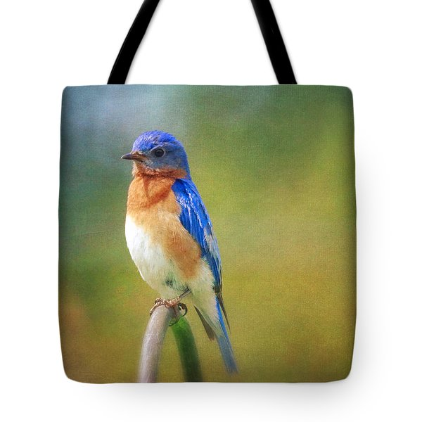 Tote Bag featuring the photograph Eastern Bluebird Painted Effect by Heidi Hermes