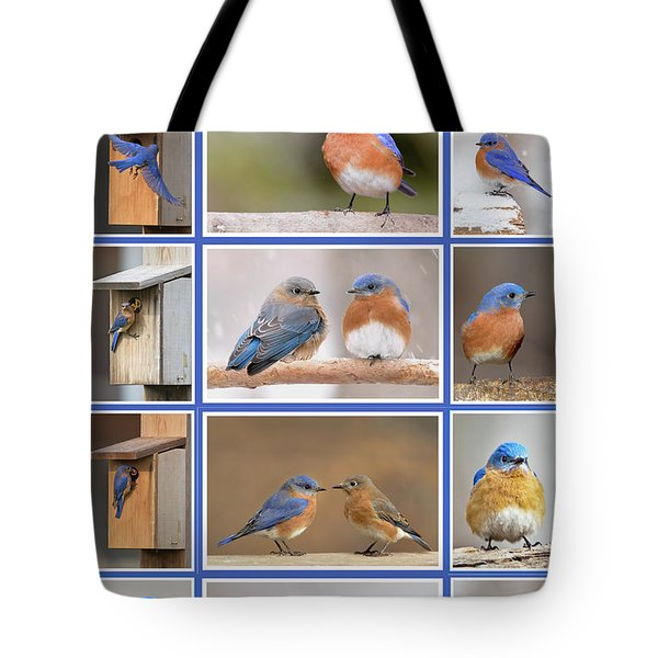 Eastern Bluebird Poster Tote Bag