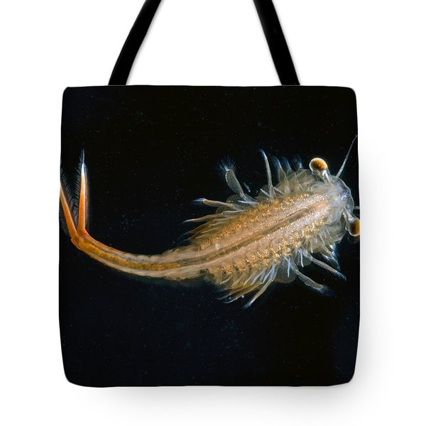 Eastern Fairy Shrimp Easterbrook Forest Tote Bag