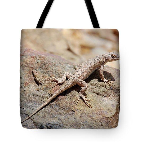 Eastern Fence Lizard, Sceloporus Undulatus Tote Bag