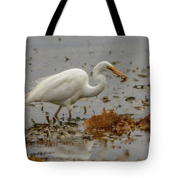 Eastern Great Egret 10 Tote Bag