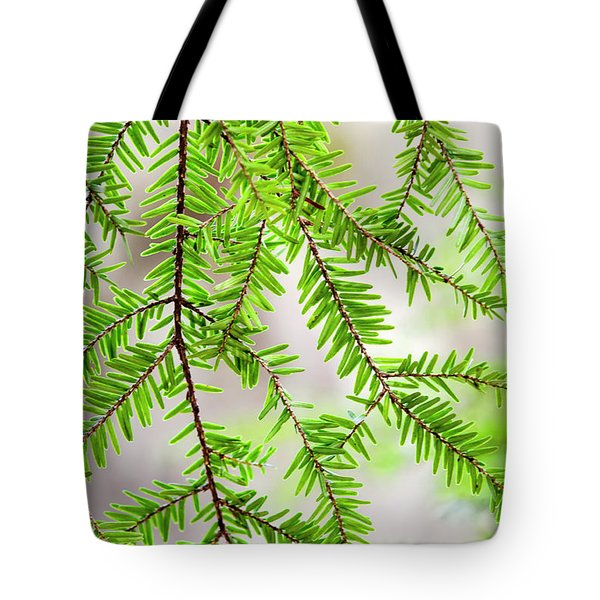 Tote Bag featuring the photograph Eastern Hemlock Tree Abstract by Christina Rollo
