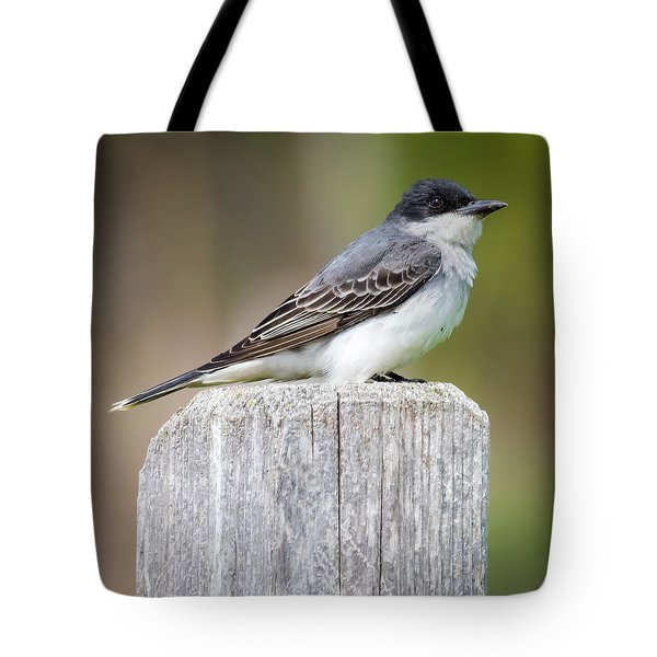 Tote Bag featuring the photograph Eastern Kingbird 2018 by Ricky L Jones