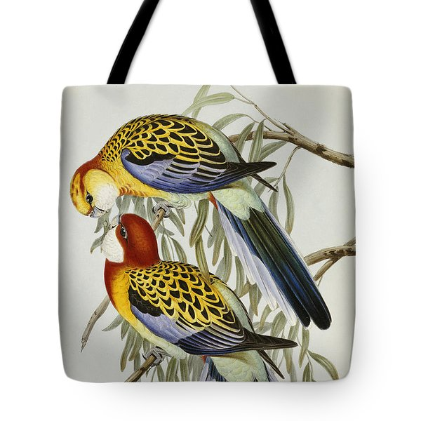 Eastern Rosella Tote Bag by John Gould