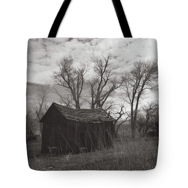 Eastern Sierra Entropy Tote Bag