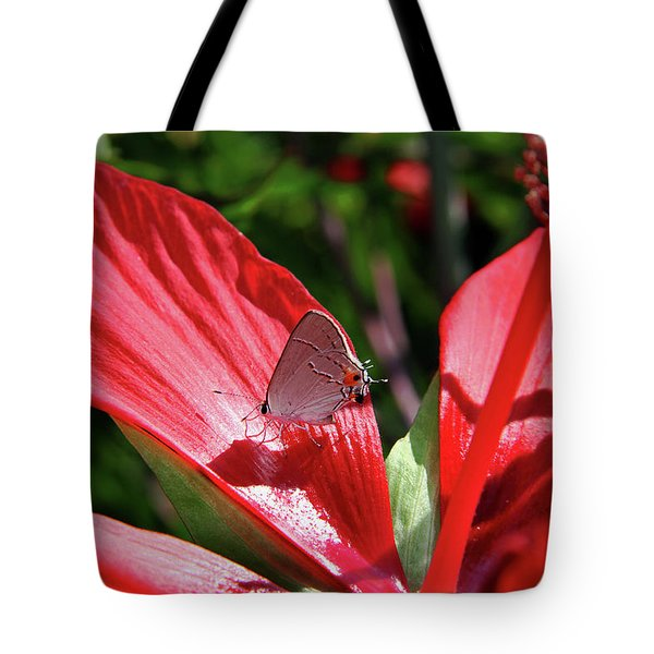 Eastern Tailed Blue Butterfly On Red Flower Tote Bag