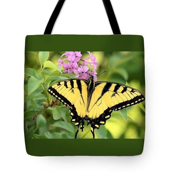 Eastern Tiger Swallowtail Butterfly Tote Bag by Sheila Brown