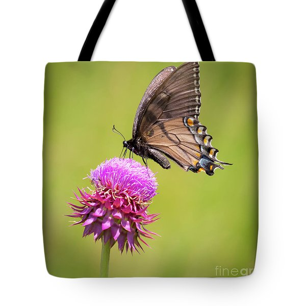 Tote Bag featuring the photograph Eastern Tiger Swallowtail Dark Form  by Ricky L Jones