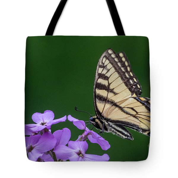 Eastern Tiger Swallowtail Tote Bag by Darleen Stry