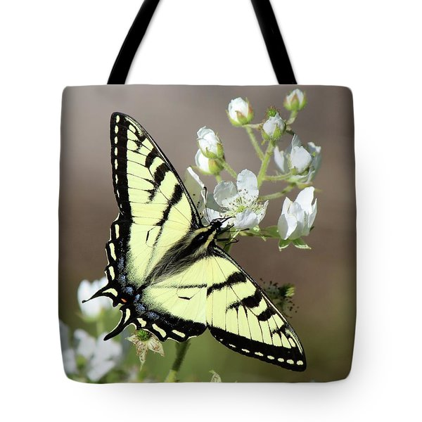 Eastern Tiger Swallowtail Female Tote Bag
