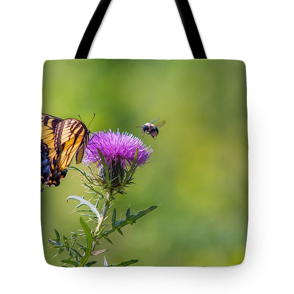 Eastern Tiger Swallowtail Tote Bag by Rima Biswas