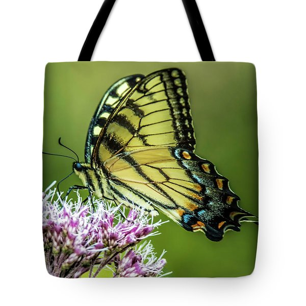 Eastern Tiger Swallowtail Tote Bag
