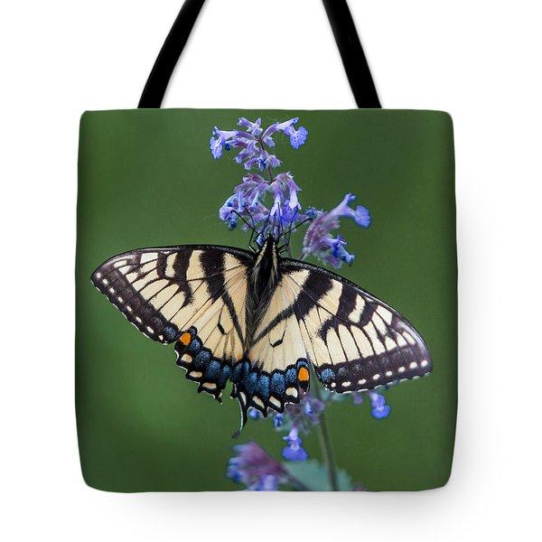 Eastern Tiger Swallowtail Wingspan Tote Bag