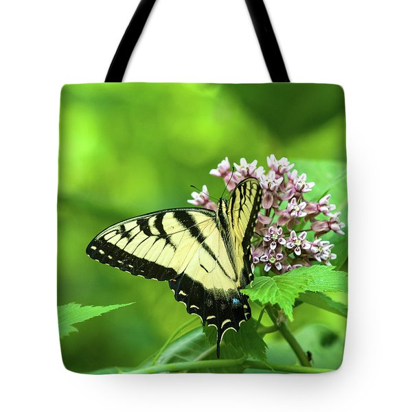 Eastern Tigerswallowtail On Milkweed Tote Bag