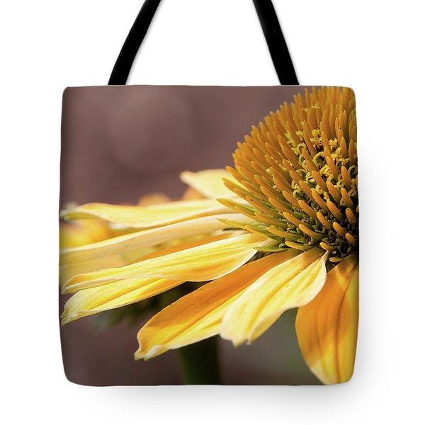 Echinacea, Cheyenne Spirit - Tote Bag