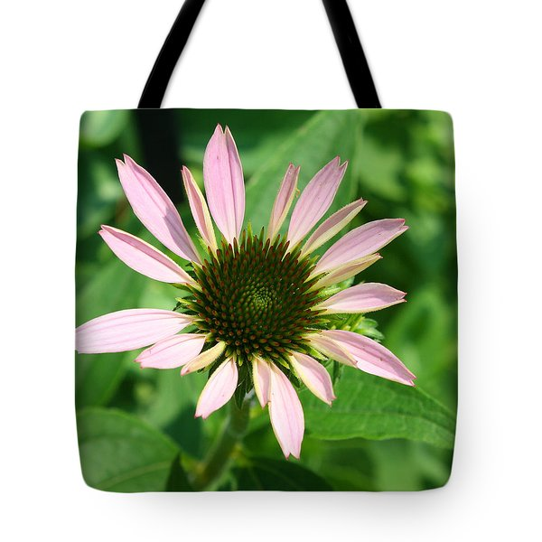 Tote Bag featuring the photograph Echinacea by Ellen Tully