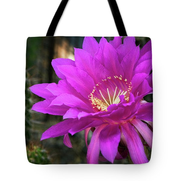 Tote Bag featuring the photograph Echinopsis In Hot Pink  by Saija Lehtonen
