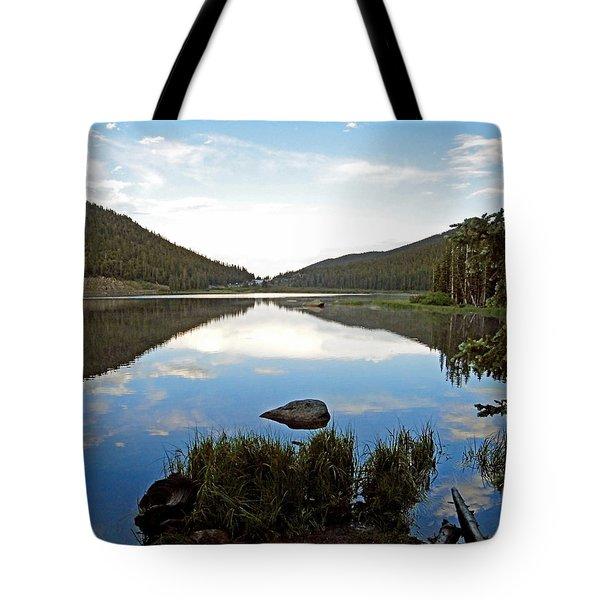 Echo Lake Study 1 Tote Bag