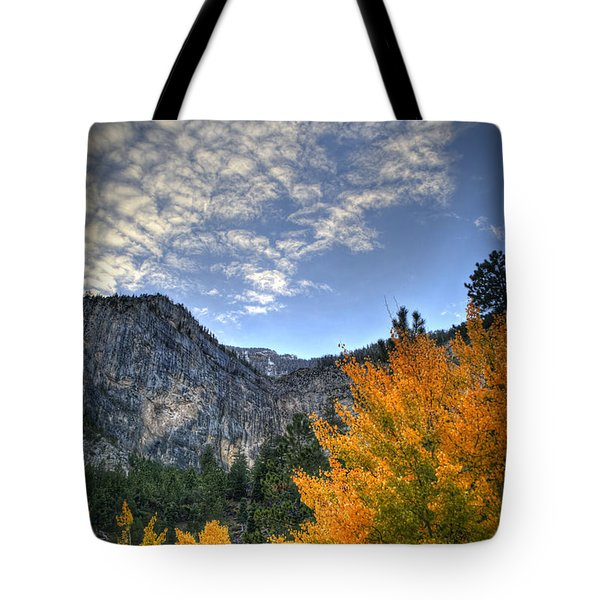 Echo Road Aspen Tote Bag