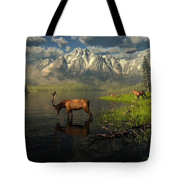 Echoes Of A Lost Frontier Tote Bag