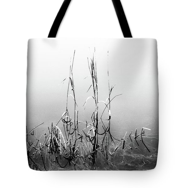 Echoes Of Reeds 1 Tote Bag
