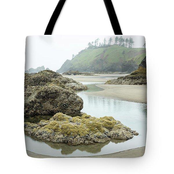 Ecola Tidepool Tote Bag