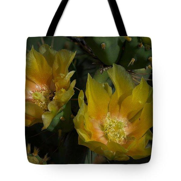 Eddie's Dream Tote Bag by Joseph Yarbrough