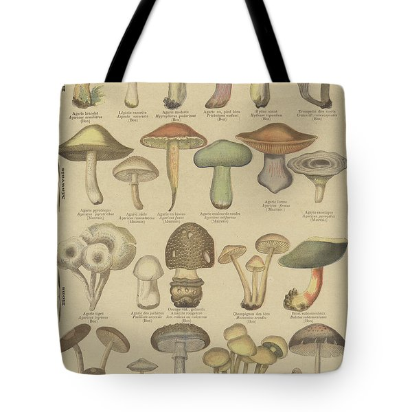 Edible And Poisonous Mushrooms Tote Bag by French School