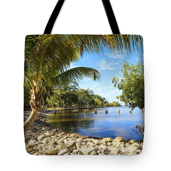 Edisons Back Yard Tote Bag