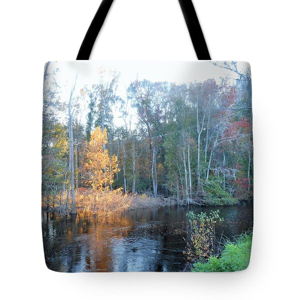 Edisto River Tote Bag by Kay Gilley