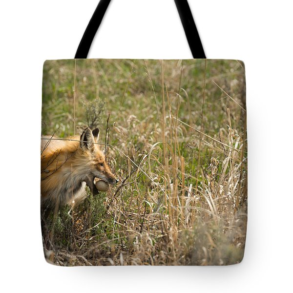 Egg Thief Tote Bag by Birches Photography