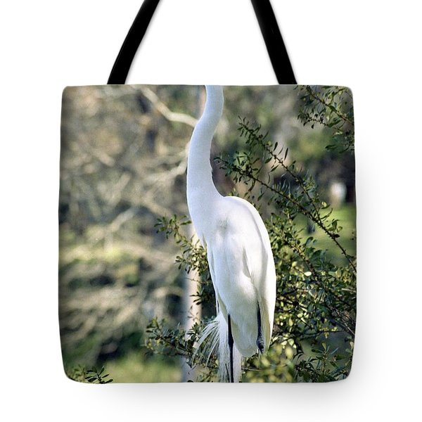 Egret 2 Tote Bag by Michael Peychich