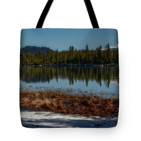 Tote Bag featuring the photograph Egret At Lava Lake by Cat Connor