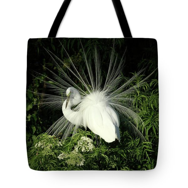Tote Bag featuring the photograph Egret Fan Dancer by Sabrina L Ryan