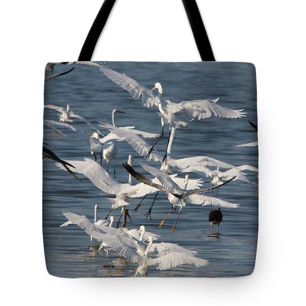 Egret Mania 3 Tote Bag