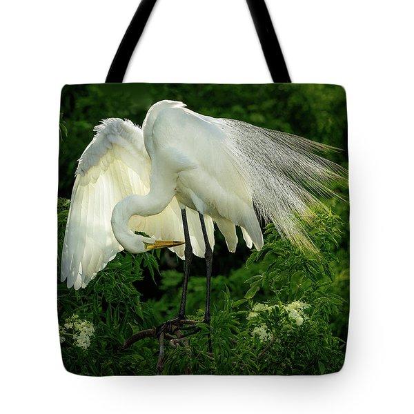 Egret Preening Tote Bag