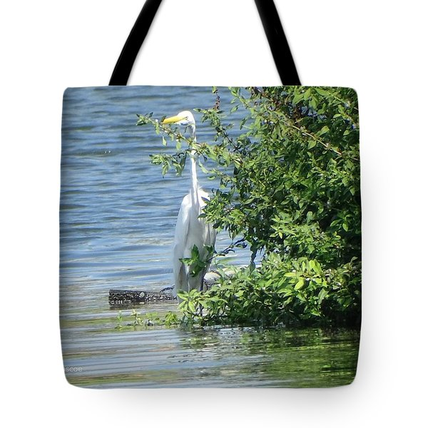 Great Egret In The Marsh Tote Bag