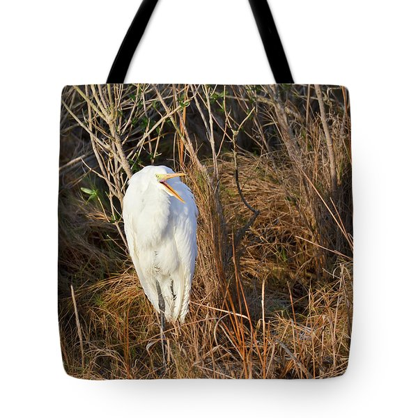 Tote Bag featuring the photograph Egret With Something To Say by George Randy Bass