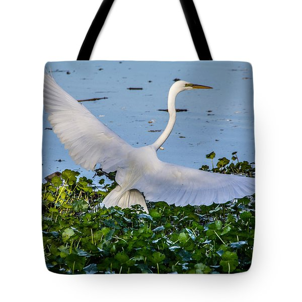 Egret With Wings Spread Tote Bag