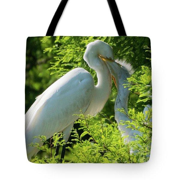 Egrets At Feeding Time Tote Bag
