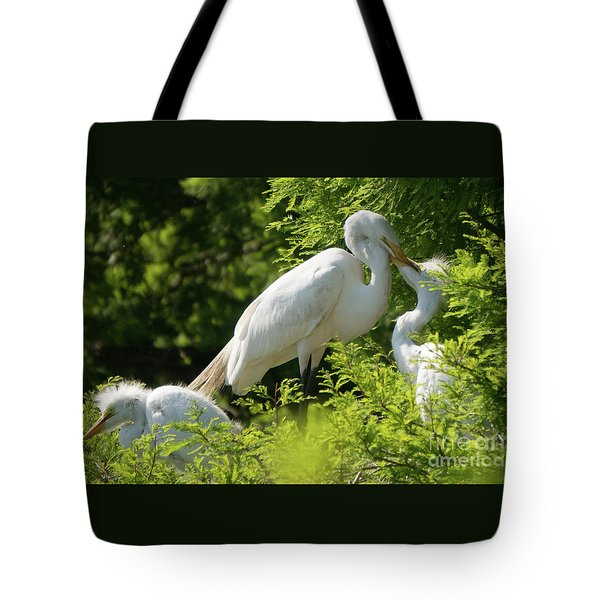 Egrets With Their Young Tote Bag