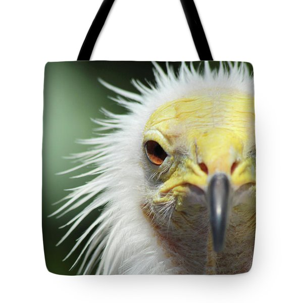 Egyptian Vulture Tote Bag