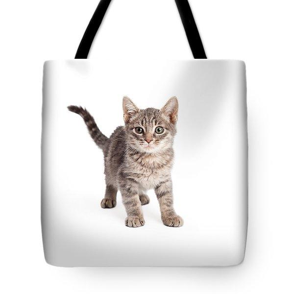 Eight Week Old Playful Tabby Kitten Tote Bag