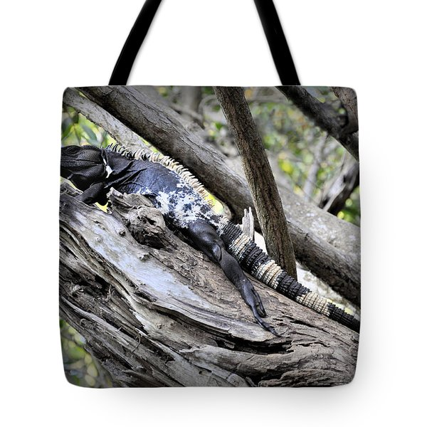 Tote Bag featuring the photograph El Garrobo by Jim Walls PhotoArtist